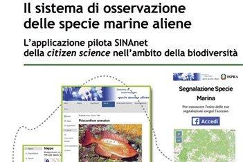 Sistema di osservazione delle specie marine aliene B-Open per ispra